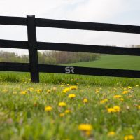 Beautiful meadow and black farm fence with bright green grass and yellow flowers