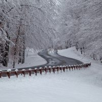 Snow covered landscape along a road in the forest