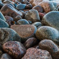 Colorful rocky coast in Acadia National Park
