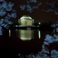 Tree leaves framing a beautiful othe Thomas Jefferson Memorial at night in Washington DC