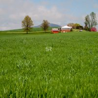 Wide shot of a beautiful countyside farm house surrounded by a grass field
