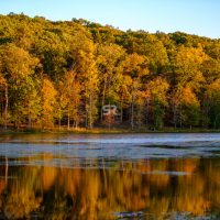 Beautiful fall colors sunset over the lake and forest