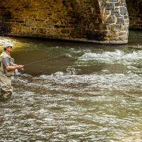 A fly fisherman fishing in the river