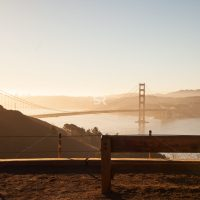 A crow watching the misty sunrise by the San Francisco Golden Gate Bridge