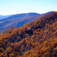 Orange & Yellow trees on the mountain with clear blue skys above