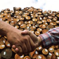 Hand shake with logs in background