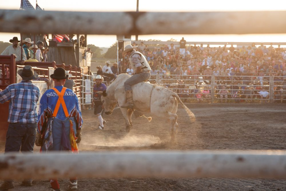 Framed shot of the audience watching the cowboy ride the bull at the rodeo