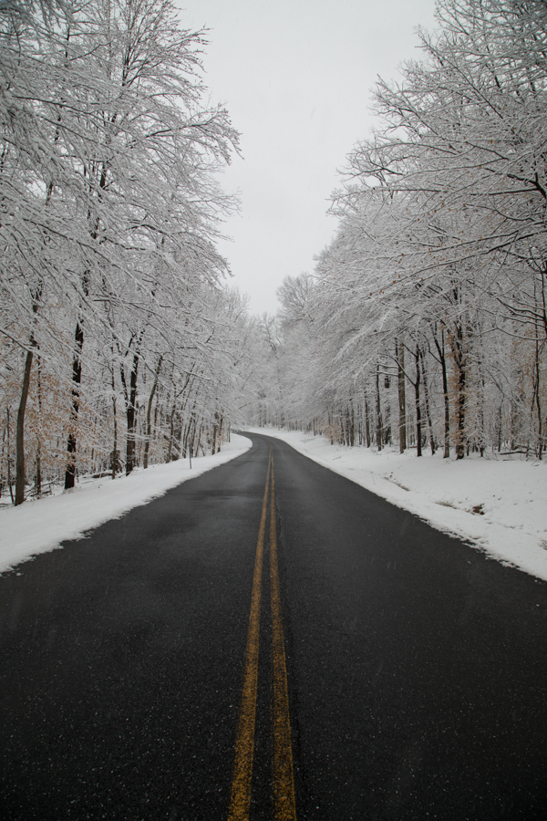 Snow covered landscape along a road in the forest on a cold winter day