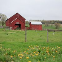 Bright red barn on a grassy field in the countryside