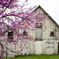 Old barn on a grassy plane surrounded by beautiful scenery